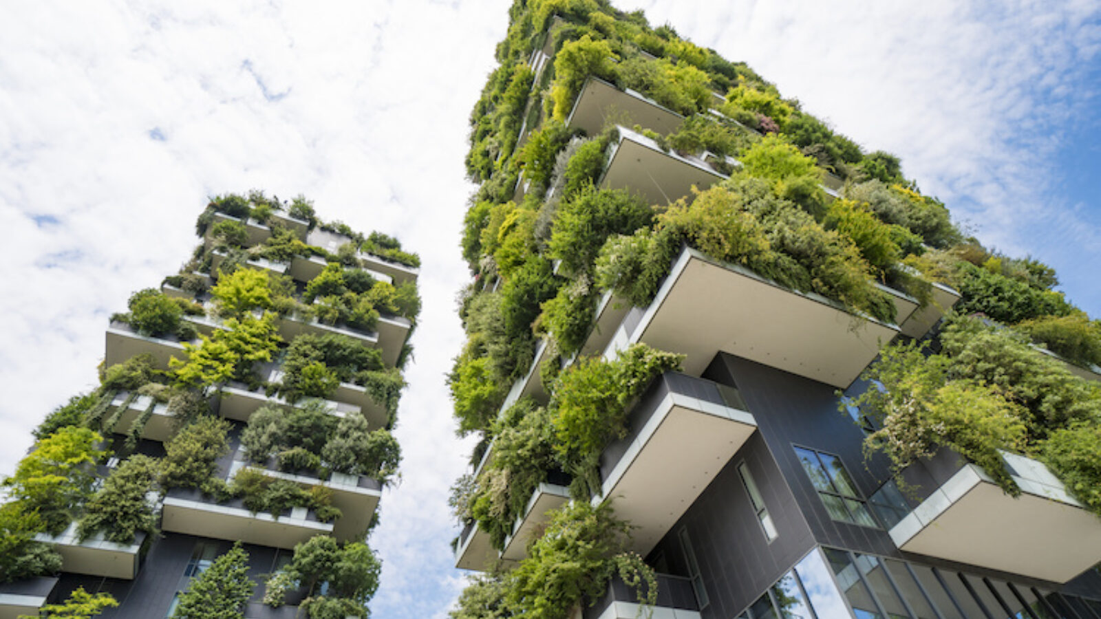 Has your company prepared for project delivery that improves nature?